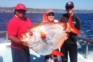 General admission offers davey 39 s locker for Opah fish price