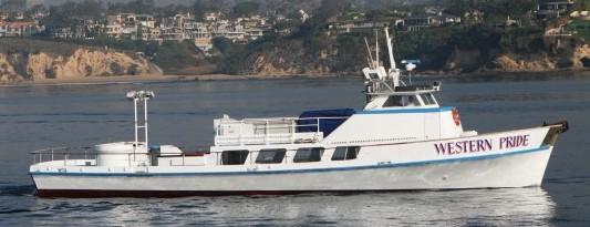 Fishing Reports For Los Angeles Long Beach Newport Beach