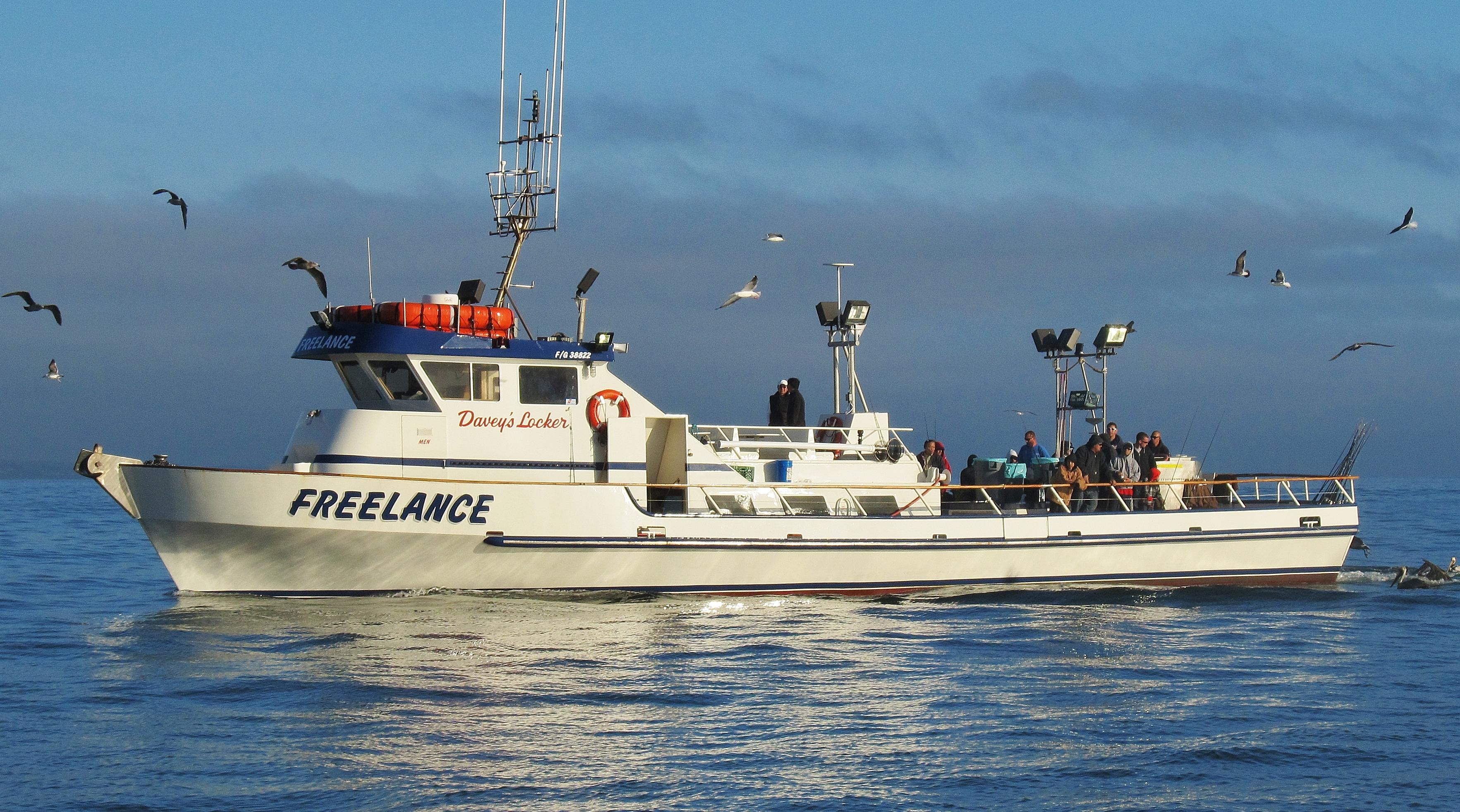 freelance twilight fishing