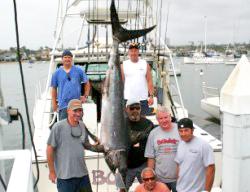 swordfish san diego