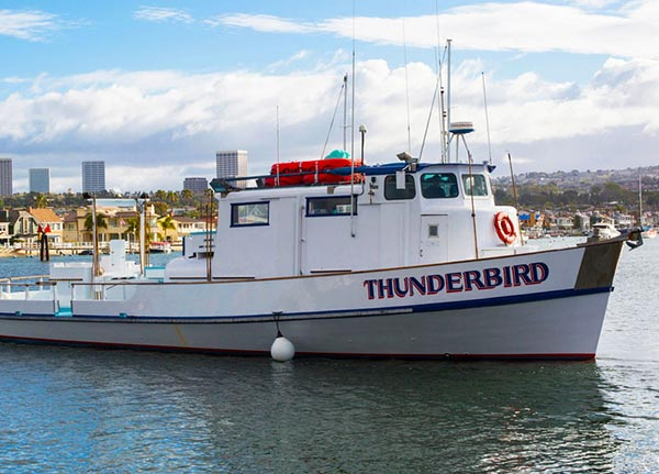 Newport Beach Fishing Boat Rental