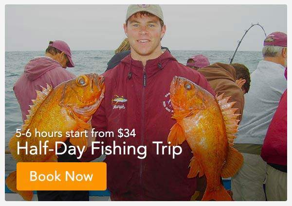 Deep Sea Fishing Catalina Island | Davey's Locker
